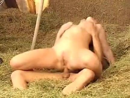 sexo na fazenda